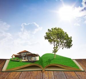 livre arbre bd