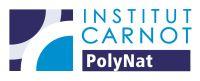 PolyNat - logo