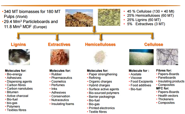 sustainable resources2
